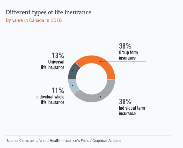 Circle graph showing the breakdown of the main types of life insurance in Canada, based on the value of policies outstanding. Group term and individual term insurance each represent 38% of the total, while universal life insurance accounts for 13% and individual whole life insurance, 11%.