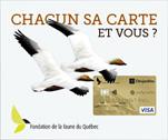 Avez-vous notre carte VISA ?