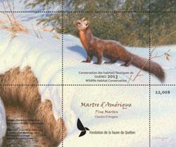 La martre d'Amérique, vedette du timbre de conservation 2013